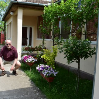My father, now, kneeling in Sinandrei house's garden.